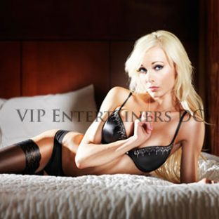 VIP Entertainers DC